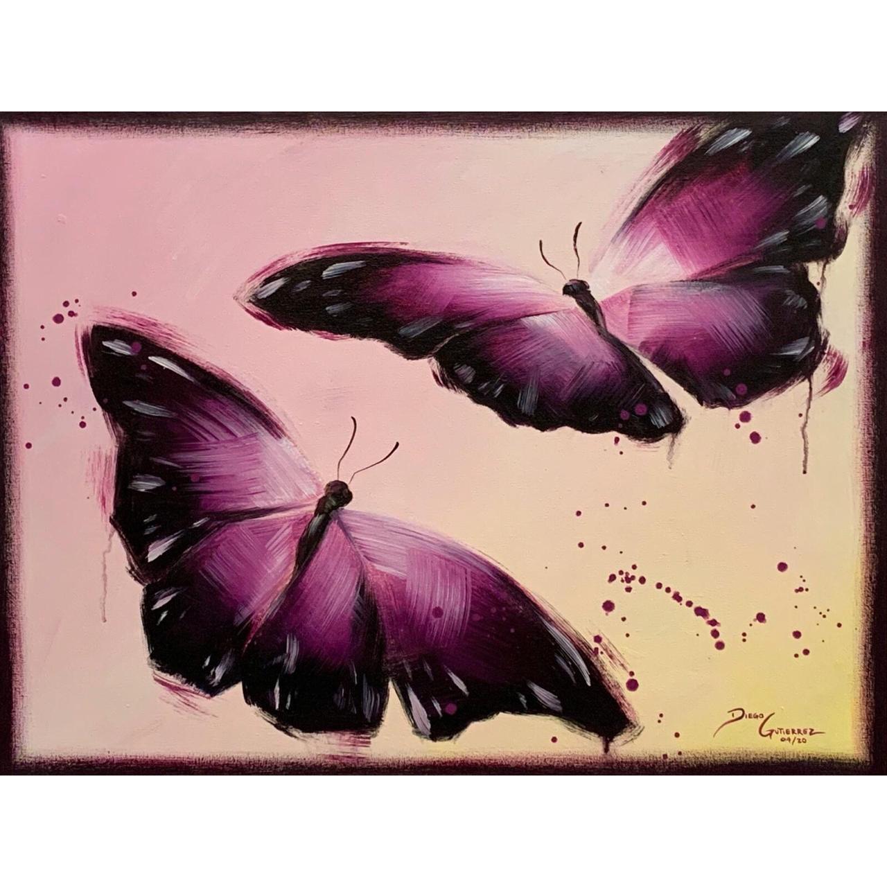 diego-gutierrez-gallery-animals-butterflies-06