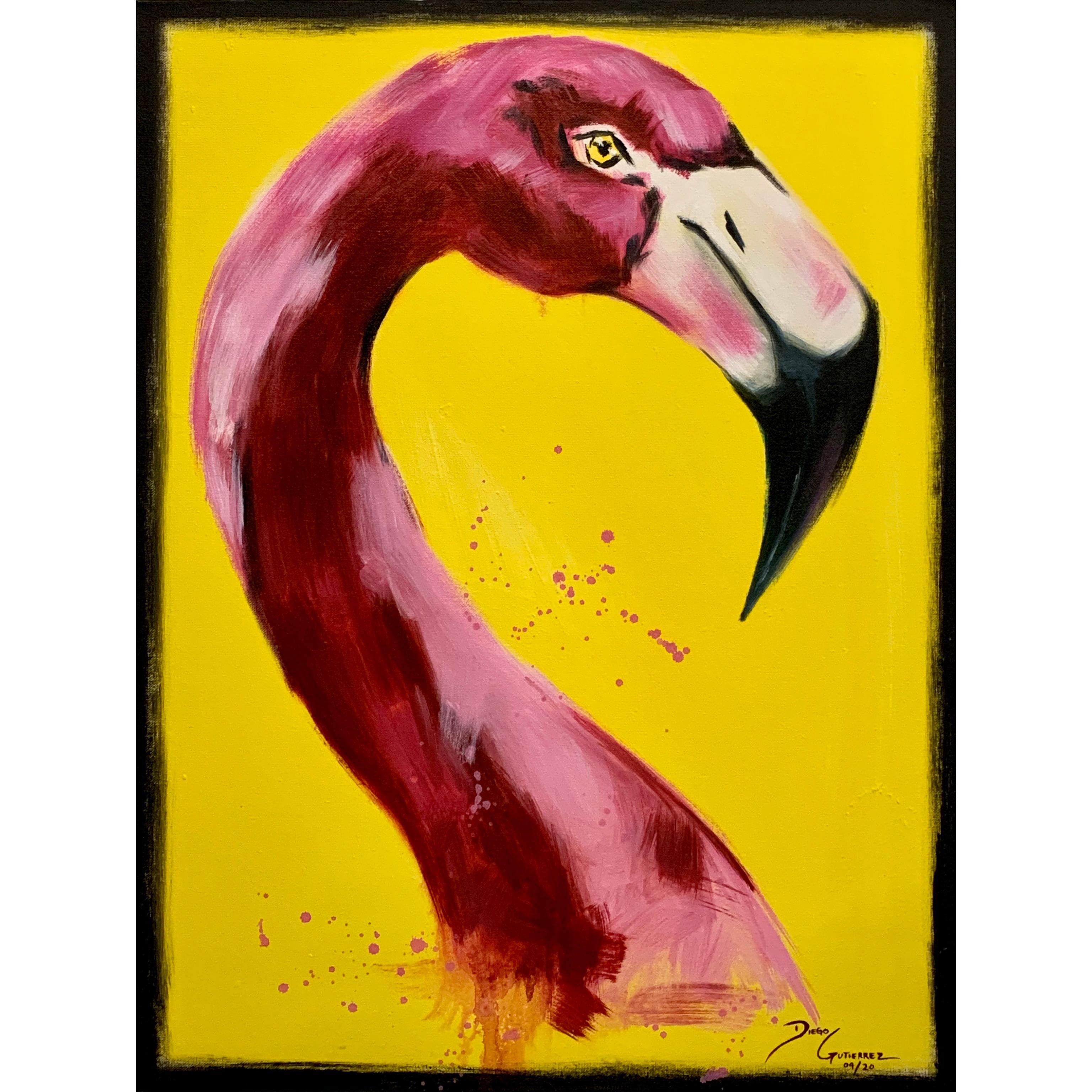 diego-gutierrez-gallery-animals-flamingo-03