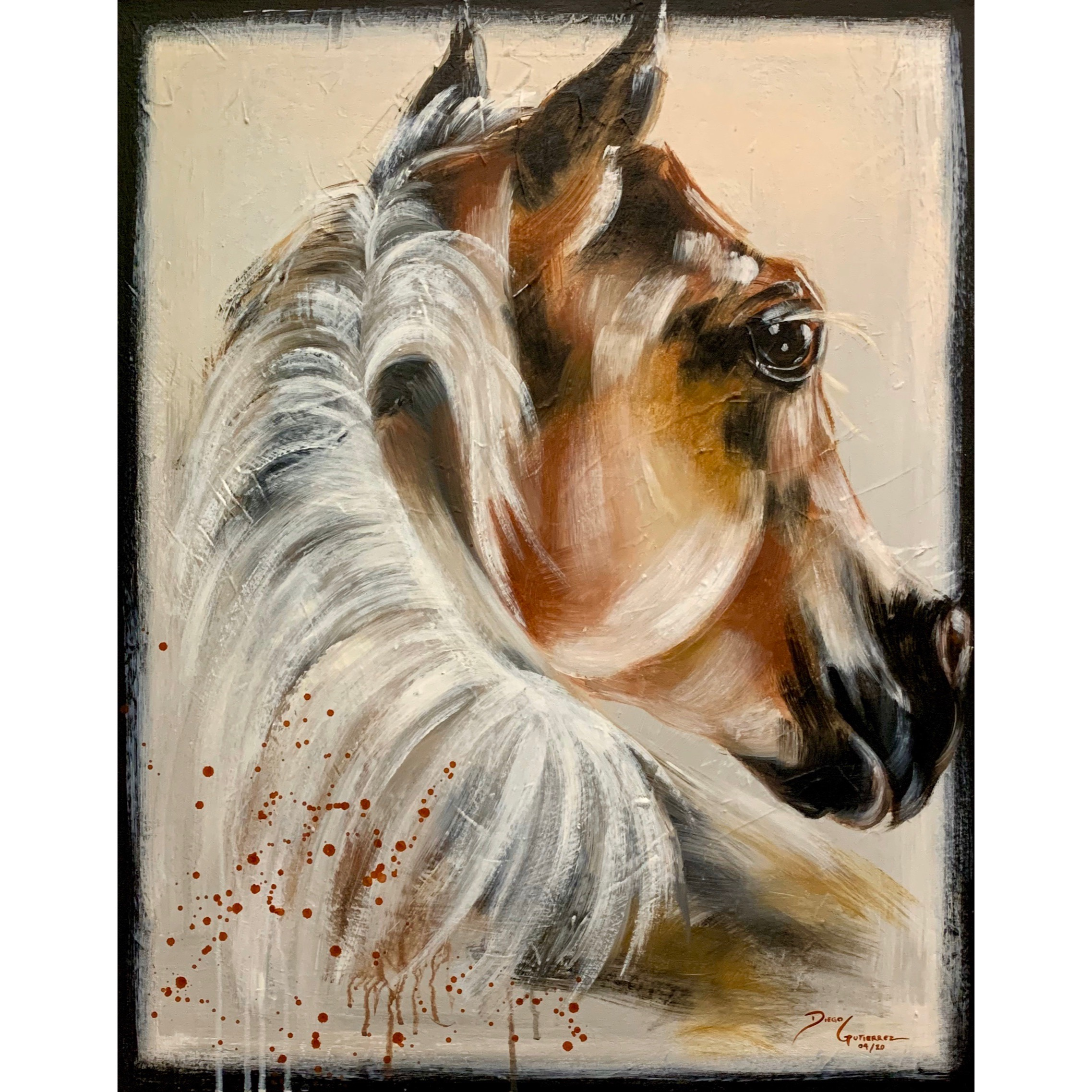 diego-gutierrez-gallery-animals-horse.05