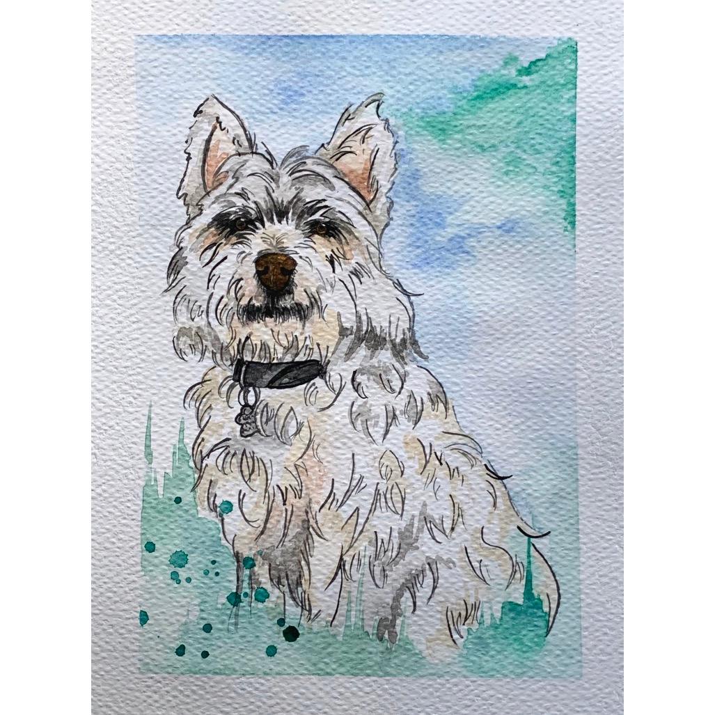 diego-gutierrez-gallery-pets-luy-02