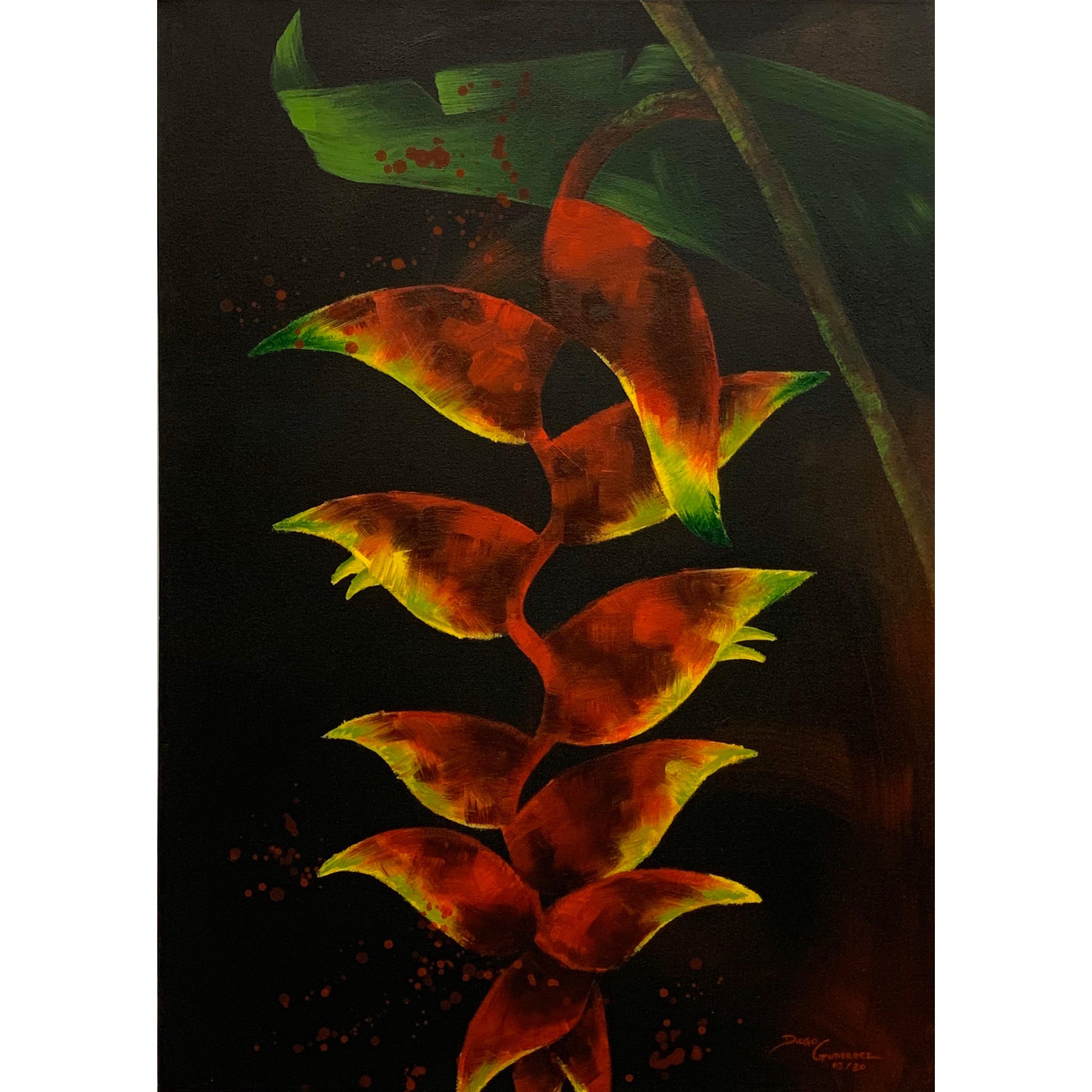 diego-gutierrez-gallery-plants-tropical-flower-03